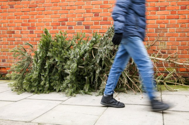 A man walks past a pile of Christmas trees left on the pavement