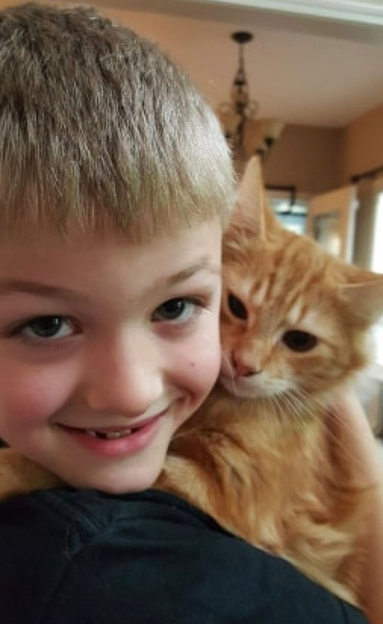 PIC BY CATERS NEWS (PICTURED Logan and Frank) This is the adorable moment a young boy became overwhelmed with emotion while being reunited with his missing cat. Logan Overlin, 11, from Yelm, Washington, was heartbroken when he learned his cat Frank, four, had disappeared earlier in 2019. According to Logans mum Marlene Overlin, 36, Frank, who is a very smart cat, had let himself out of the house by opening the door to the back porch, and never came back. A few weeks after the disappearance, Logan received the sweetest surprise when he came home and found Frank safe and well, waiting for him in Marlenes arms. SEE CATERS COPY