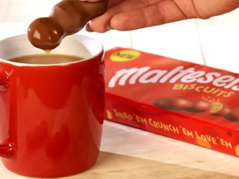 We tried the new Malteser chocolate biscuits – and they are good