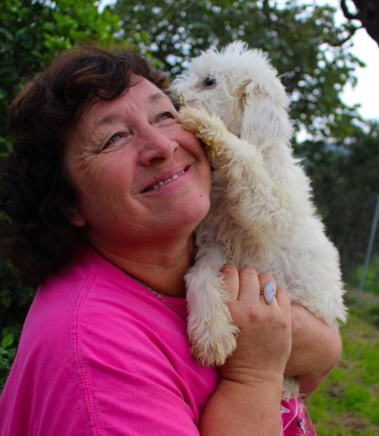Sue Deeth, founder of Healing Paws Animal Rescue