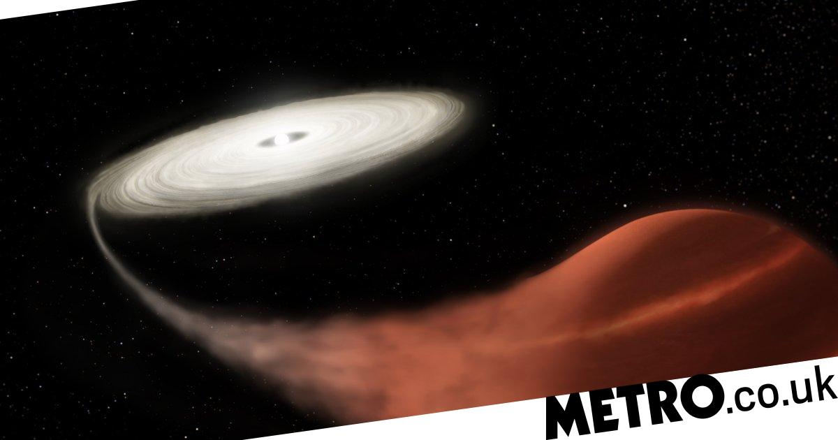 'Vampire star' on a feeding frenzy discovered way out in deep space