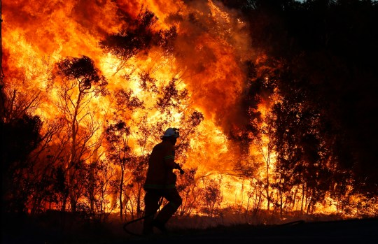 Fire crews back burn areas of bushland at Salt Ash, in the NSW Hunter region, on Sunday, August 19, 2018. An emergency warning was sent to residents around Rookes Road, Lemon Tree Passage Road and Brownes Road in Salt Ash. (AAP Image/Darren Pateman) NO ARCHIVING