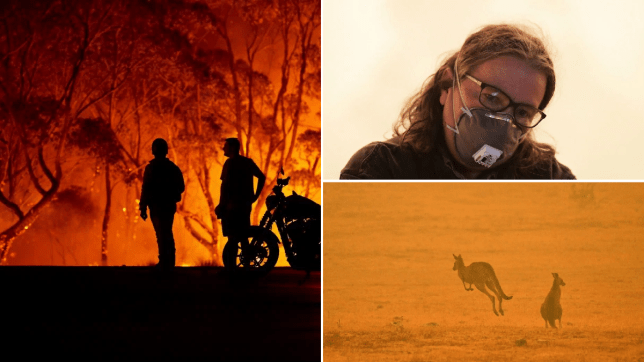 Your bushfire donation may not reach Australia for months