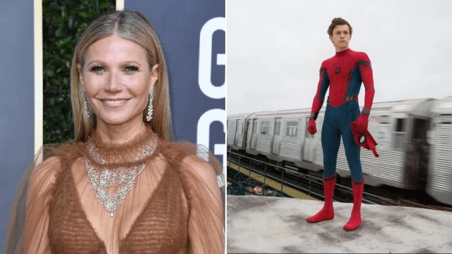 Gwyneth Paltrow spider-man