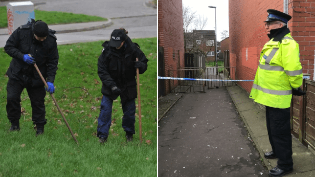 Manhunt launched after girl, 16, is raped in alley