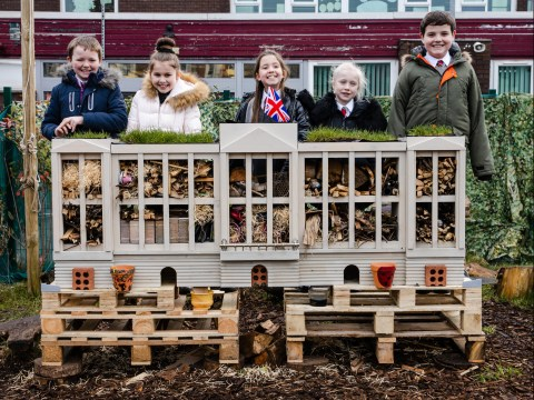 Children create miniature bug replica of Buckingham Palace to highlight the importance of insects