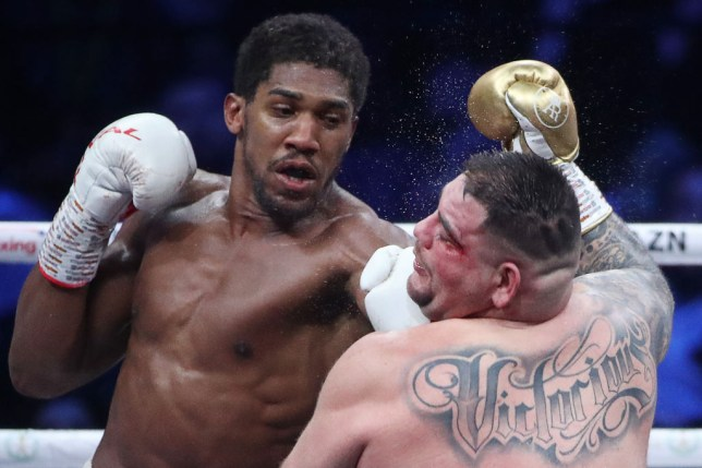 Anthony Joshua punches Andy Ruiz during their heavyweight fight