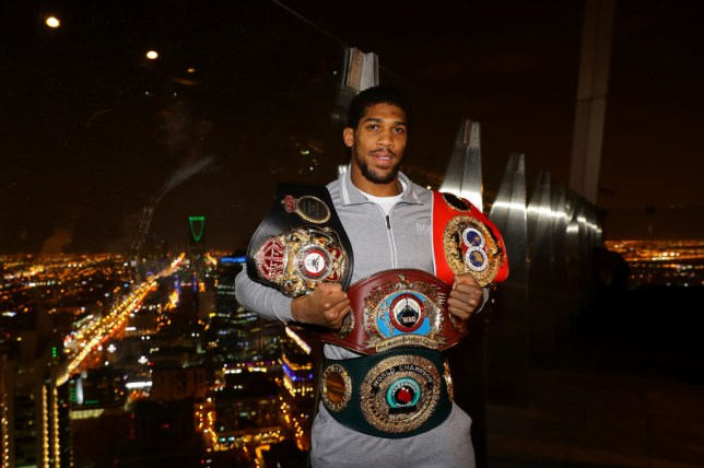 Anthony Joshua retained his world heavyweight titles after defeating Andy Ruiz in November