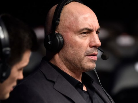Joe Rogan and Dominick Cruz blast UFC 247 judge for not looking at fight