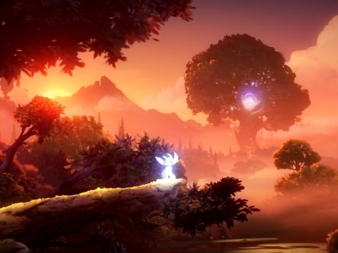 Ori And The Will Of The Wisps review – why ours won't be ready until after launch
