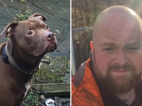 Man dies after being mauled by dog during medical episode