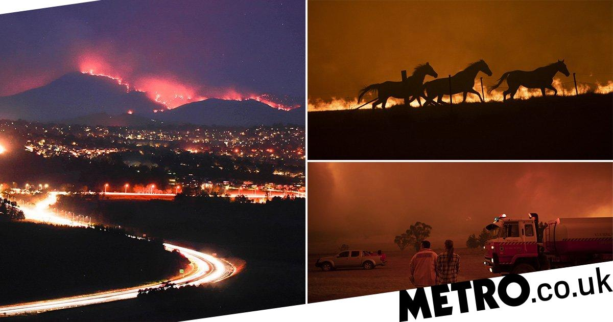 Australian bushfires threaten capital amid warnings it's too late to evacuate