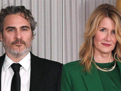 Laura Dern and Joaquin Phoenix among celeb guests at swanky Academy Awards cocktail reception