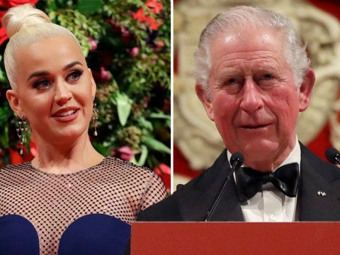 Katy Perry appointed as ambassador of Asian Trust by Prince Charles