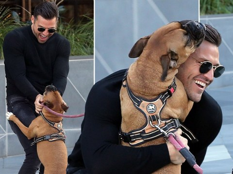 Mark Wright's reaction to playing with a dog is the purest thing you'll see all day
