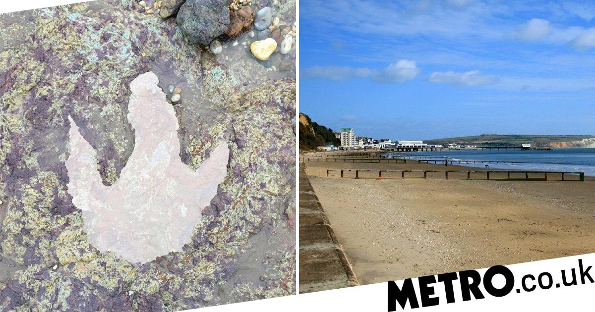 Storm Ciara uncovered evidence of dinosaurs on British beach - Metro.co.uk