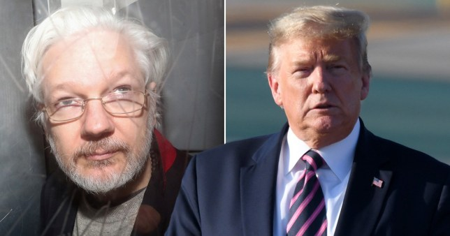 Trump 'offered Assange pardon if he denied Russian involvement in US election'