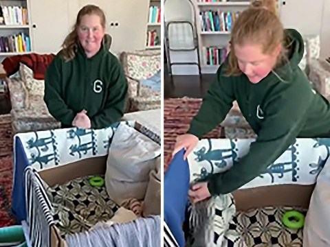 Amy Schumer returns to YouTube to share 'parenting hack' involving a cardboard box for the baby