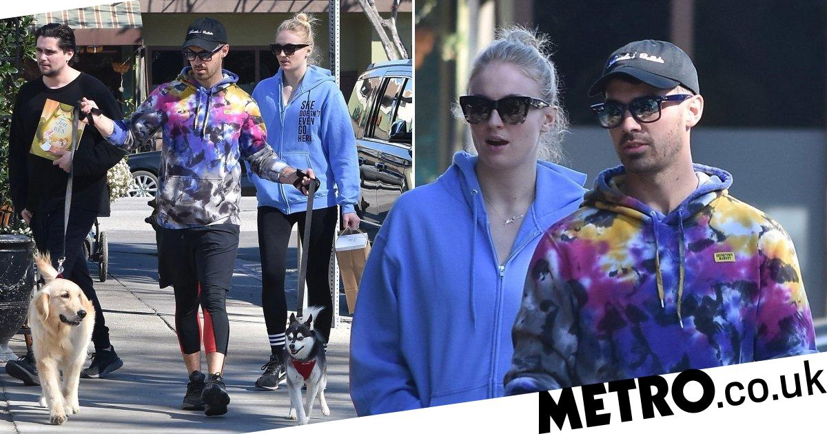 Sophie Turner and Joe Jonas have day out with dogs amid 'pregnancy' rumours