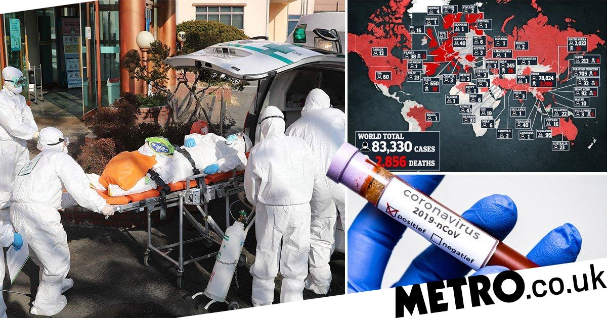 Pandemic simulation 'killed' 65,000,000 months before real outbreak