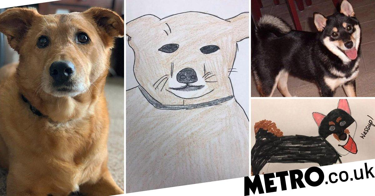 Shelter does bad pet portraits to raise money and is inundated with requests