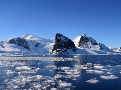 Antarctica hits record high as temperature goes above 20C for first time in history