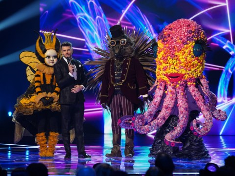 The Masked Singer goes out with a bang as 6.4 million watch Queen Bee win competition