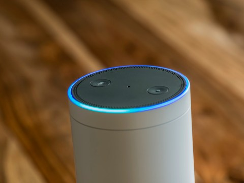 How to uncover your Alexa recordings – and delete them