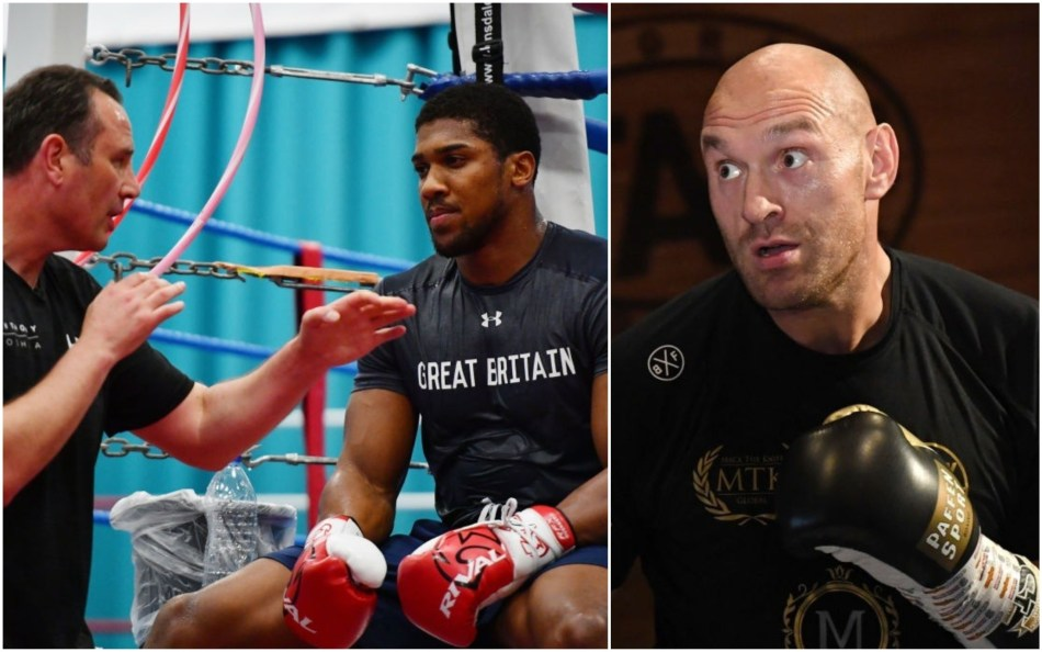 Anthony Joshua's head trainer Rob McCracken (left) is backing Tyson Fury to beat Deontay Wilder in his rematch on February 22