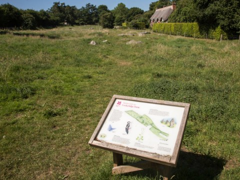 National Trust opens parks and gardens for free