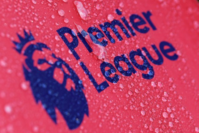 Premier League to hold crisis coronavirus meeting with all 20 clubs on Thursday