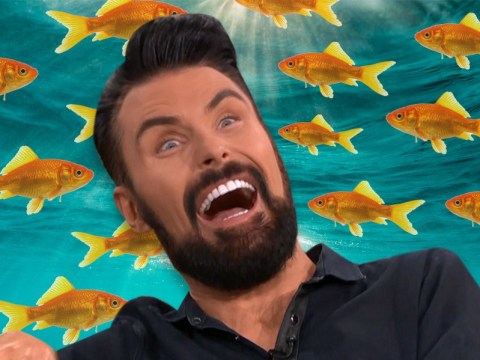 Rylan Clark-Neal reveals he 'won't eat fish' after falling into seafood counter during childhood