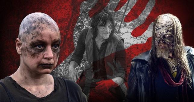 The Walking Dead: Alpha, Daryl, Beta