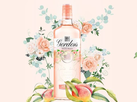 Asda has a limited edition white peach Gordon's Gin so, you know what to do