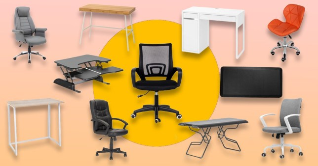Office chairs and desks
