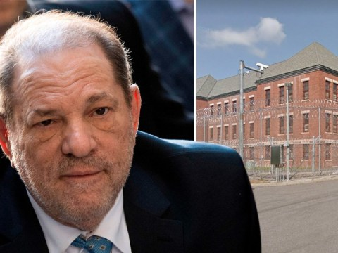 What it's like inside Harvey Weinstein's new prison as rapist moves to state facility