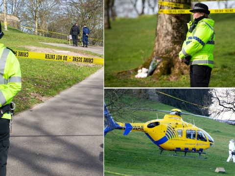 Woman 'who stabbed girl, 7, to death in park' detained under mental health act