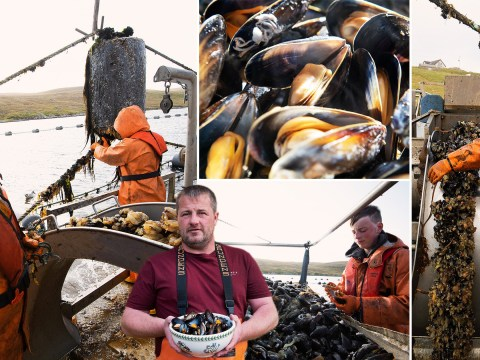 Meet the trawlerman turned mussels man tending his ropes on the Shetland seas