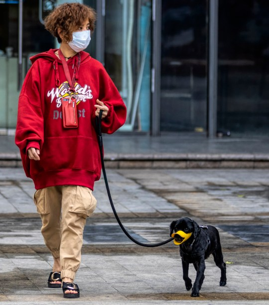 epa08214721 A woman wears a mask as she walks her dog in Guangzhou, China, 13 February 2020. On 12 February Hubei province recorded the largest single-day spike in coronavirus-related deaths, with 242 victims and 14,840 people diagnosed with Covid-19. The disease caused by the SARS-CoV-2 has been officially named Covid-19 by the World Health Organization (WHO). The outbreak, which originated in the Chinese city of Wuhan, has so far killed at least 1,369 people with over 60,000 infected worldwide, mostly in China. EPA/ALEX PLAVEVSKI
