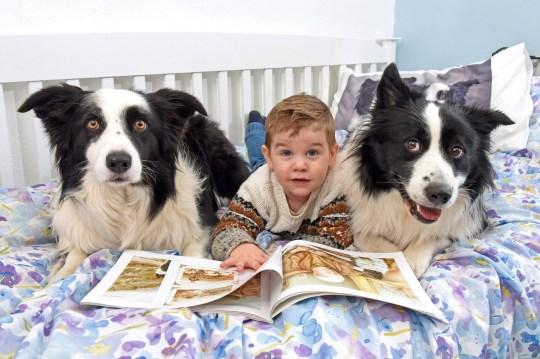 Jenson reading a bedtime story with Fenn and Nova