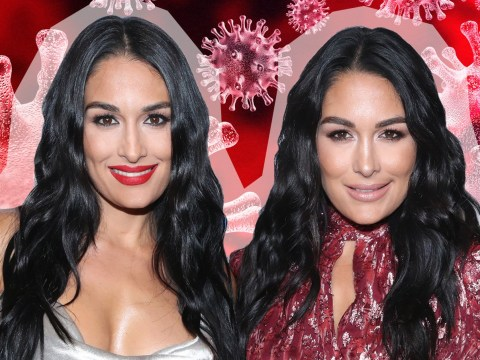 Pregnant Nikki and Brie Bella are 'terrified' of catching coronavirus and want people showing signs of flu to 'stay at home'