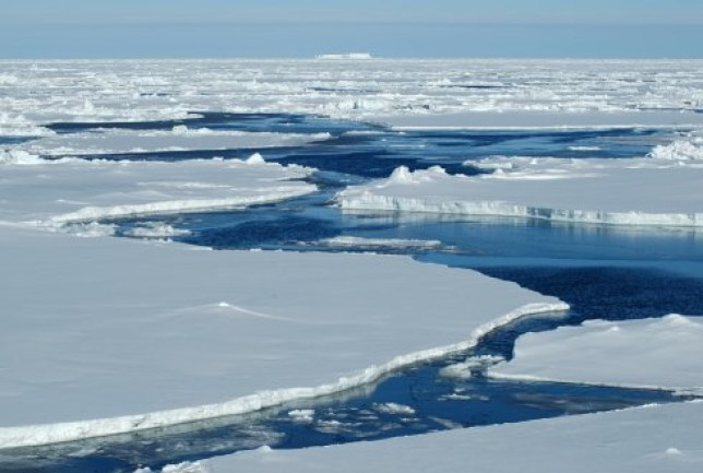 Arctic Ocean has chlamydia https://www.wur.nl/en/newsarticle/Chlamydia-related-bacteria-discovered-deep-below-the-Arctic-Ocean.htm