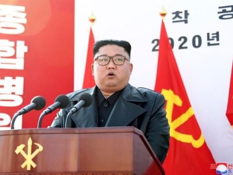 North Korea 'lying' about having no coronavirus cases, experts claim