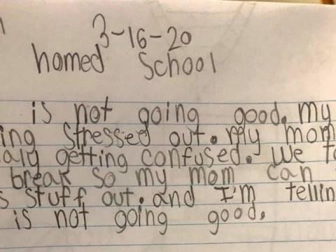 Boy, 8, writes hilarious journal criticising mum's homeschool technique