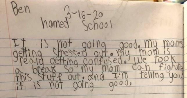 Son's hilarious homeschool diary