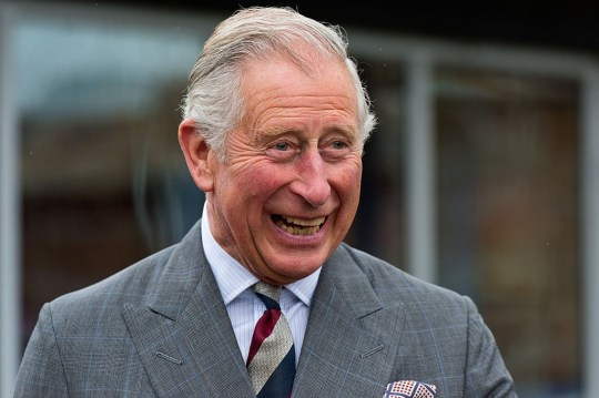 Prince Charles recovers from coronavirus and is out of self ...