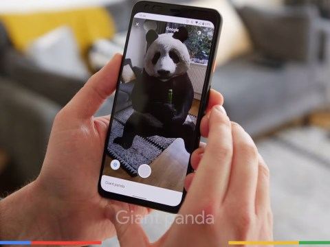 Google 3D animals: how to see a tiger, lion and panda in 3D