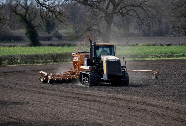 Coronavirus Uk How To Apply For Farm Work During Covid 19 Lockdown Metro News