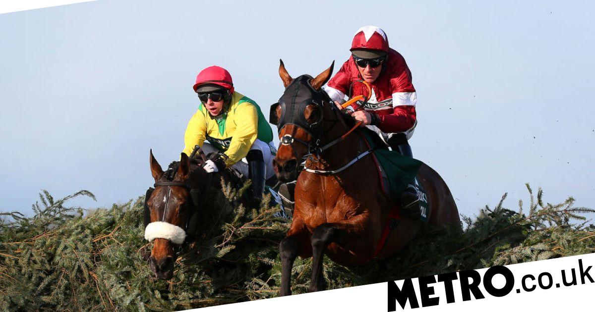 Potters Corner wins Virtual Grand National with favourite Tiger Roll fourth - metro
