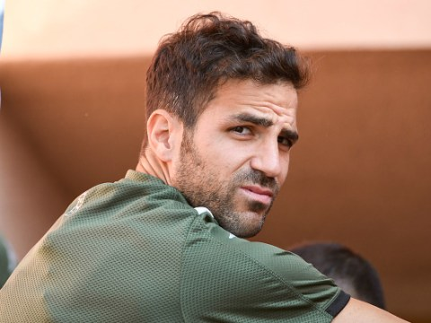 Former Arsenal and Chelsea star Cesc Fabregas says Liverpool 'hit the jackpot' with Jurgen Klopp appointment